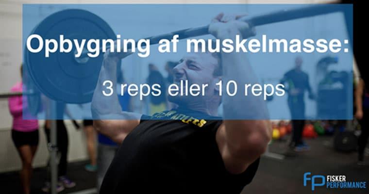 Thumbnail billede til opbygning af muskelmasse